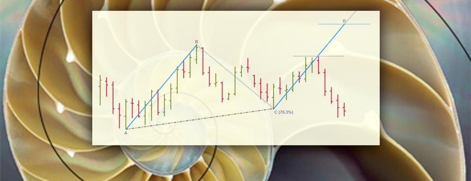 Included in the neoHarmonics toolkit are easy-to-use symmetry tools (AB=CD).  Fibonacci Harmonic Trading