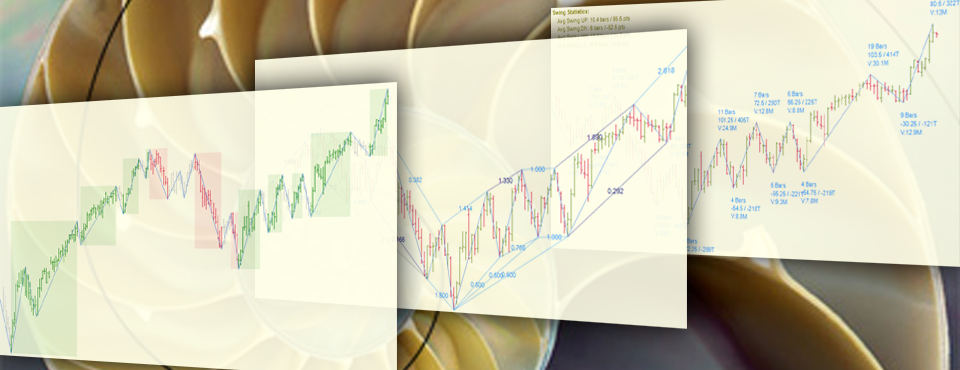 Swing Analysis - Bias, Fibonacci Retracements, and Metrics, Fibonacci Harmonic Trading